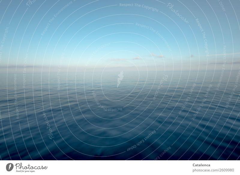 Ruhe in Blau Natur Landschaft Wolkenloser Himmel Horizont Sommer Schönes Wetter Wellen Meer Mittelmeer glänzend alt Flüssigkeit Unendlichkeit maritim blau rosa