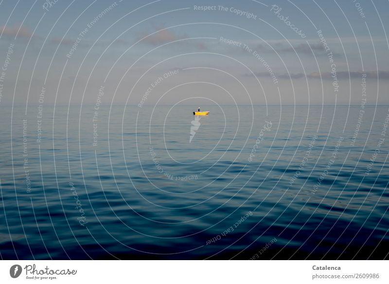 Ins Blau Himmel Sommer blau Wasser Landschaft Meer schwarz gelb Umwelt klein Schwimmen & Baden rosa Freizeit & Hobby Horizont Wellen Lebensfreude