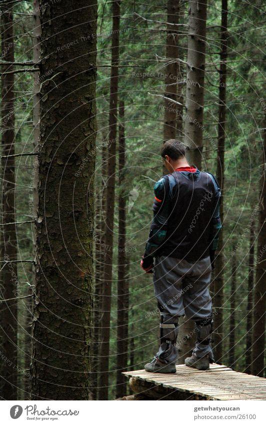 Er dachte: 112 Wald Mann ruhig stehen Baum springen Steg Northshore Beach Holz Schutzausrüstung Extremsport Natur Mut Angst Niveau Denken Außenaufnahme