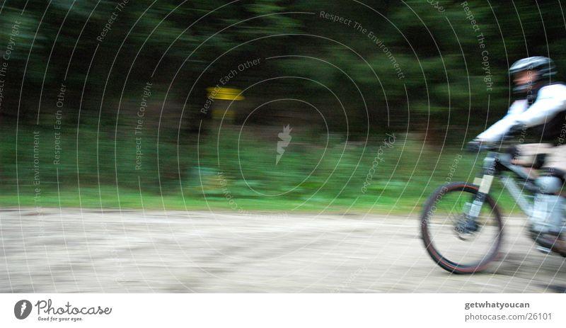Schallmauer Fahrrad Geschwindigkeit Wald Helm Mann Unschärfe Kies Extremsport Wege & Pfade Natur Mut Bewegung Vorderseite Außenaufnahme