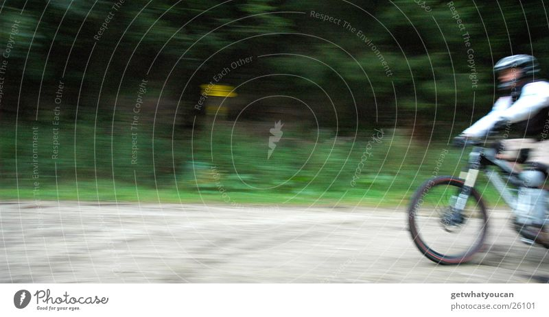 Schallmauer Mann Natur Wald Bewegung Wege & Pfade Fahrrad Geschwindigkeit Mut Kies Helm Vorderseite Extremsport