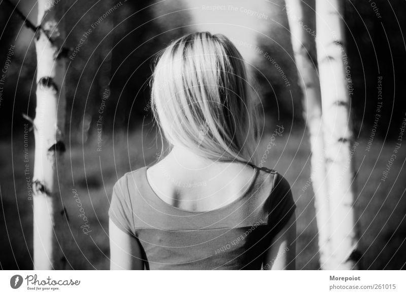 Weg feminin Junge Frau Jugendliche Erwachsene Kopf Haare & Frisuren Rücken 1 Mensch 18-30 Jahre Natur Sonne Sommer Schönes Wetter Pflanze Baum Park blond Denken