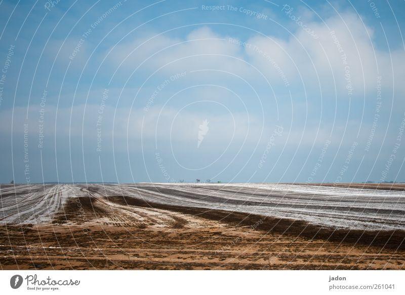 der winter ist bunt. Himmel blau Winter Wolken ruhig Landschaft Schnee Sand braun Horizont Eis Kraft Feld Wachstum trist Frost