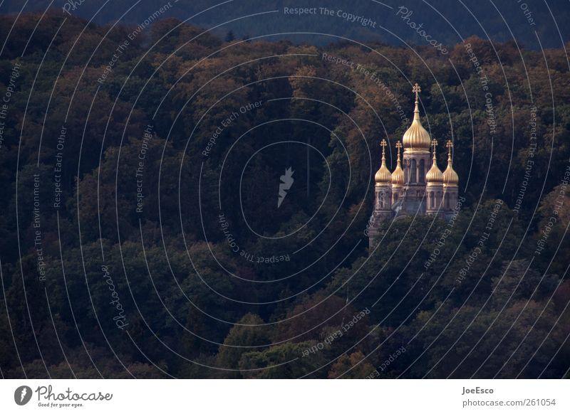 #261054 Tourismus Ausflug Architektur Landschaft Baum Wald Kirche Bauwerk Gebäude entdecken dunkel kalt schön Kapelle Religion & Glaube Gold Turm