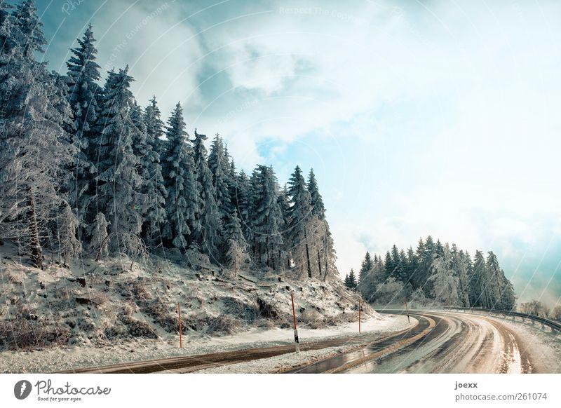 Schwarzwaldhochstraße Natur Landschaft Himmel Wolken Winter Wetter Baum Wald Berge u. Gebirge Verkehrswege Straße kalt nass blau braun schwarz weiß Hochstraße