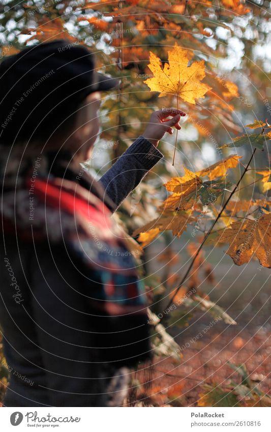 #A# Herbst-Ausflug 1 Mensch Natur Klima Schönes Wetter ästhetisch herbstlich Herbstlaub Herbstfärbung Herbstbeginn Herbstwald Herbstwetter Herbstlandschaft
