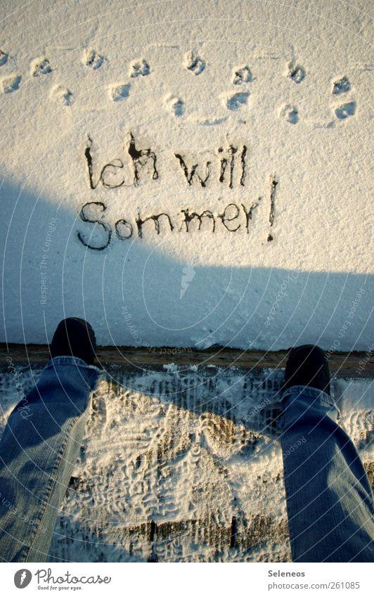 Jetzt. Mensch Natur Sommer Winter Umwelt kalt Schnee Beine Fuß Wetter Eis Schuhe Schriftzeichen stehen Frost Jeanshose