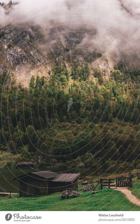 Weg am See ruhig Ferien & Urlaub & Reisen Ausflug Sommer Berge u. Gebirge wandern Natur Landschaft Wasser Wolken Sonne Herbst Wetter schlechtes Wetter Nebel