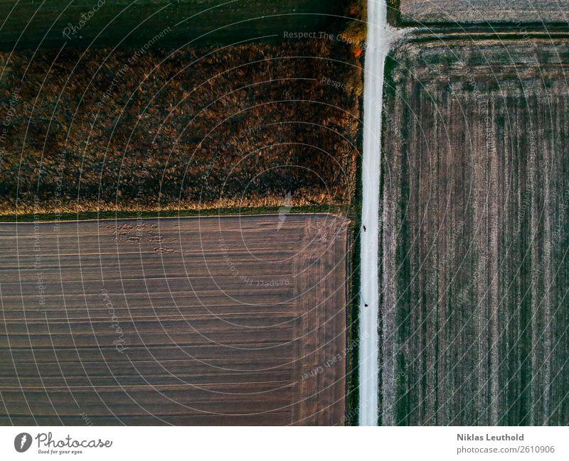 Von oben herab wandern Natur Landschaft Erde Herbst Schönes Wetter Pflanze Gras Nutzpflanze Wiese Feld Wege & Pfade dunkel Unendlichkeit hoch trocken braun grün