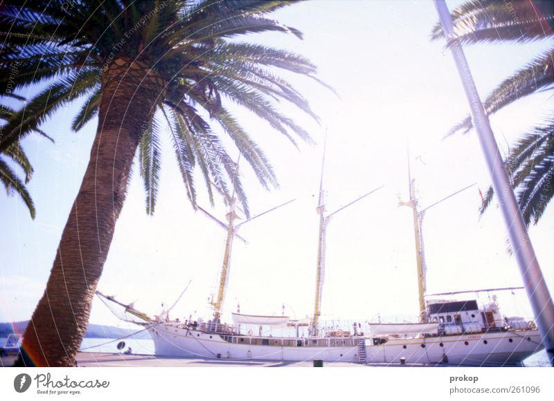Mitten in die Sonne rein Ferien & Urlaub & Reisen Tourismus Ausflug Abenteuer Ferne Freiheit Sommerurlaub Hafenstadt Schifffahrt Bootsfahrt Passagierschiff