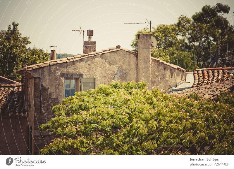 Carcassonne V alt Baum Ferien & Urlaub & Reisen Haus Ferne Architektur Wärme Stein Gebäude Fassade Ausflug Armut Abenteuer Idylle Bauwerk verfallen