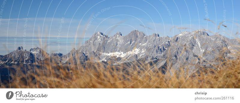 Dachstein Sommer Sommerurlaub Berge u. Gebirge wandern Umwelt Natur Landschaft Himmel Wolken Herbst Schönes Wetter Gras Felsen Alpen Schneebedeckte Gipfel blau