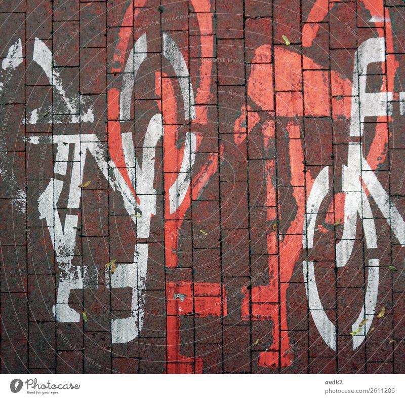 Wer hat Vorfahrt? Verkehr Verkehrswege Fahrradweg Polen Pflastersteine Pflasterweg Zeichen Schilder & Markierungen unten verrückt rot weiß chaotisch Desaster