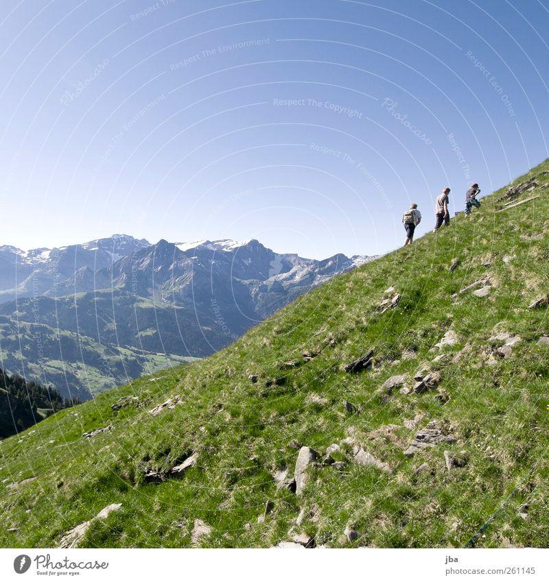 Aufstieg Mensch Natur Jugendliche Sommer ruhig Erwachsene Wiese Leben Landschaft Berge u. Gebirge Freiheit Gras Freundschaft Zufriedenheit wandern maskulin