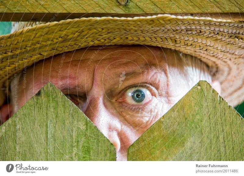 ein neugieriger Nachbar steht hinter einem Zaun Mensch maskulin Mann Erwachsene Auge 1 60 und älter Senior beobachten alt Neugier Gefühle Stimmung uneinig Wut