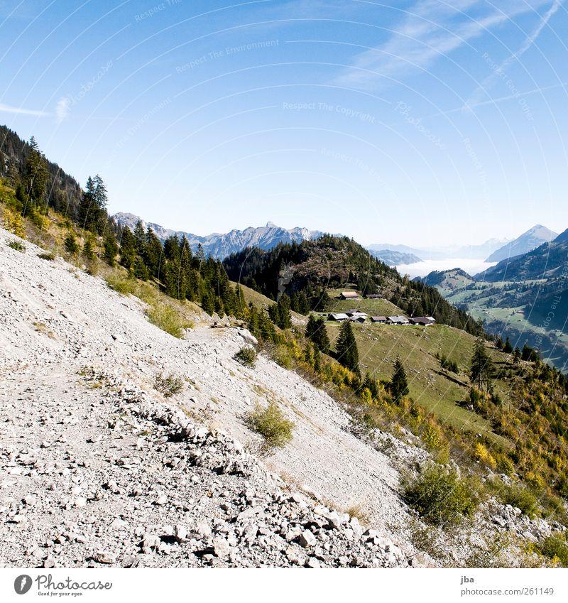 Bergwelt Natur Baum Sommer Freude Einsamkeit Wald Wiese Herbst Leben Landschaft Berge u. Gebirge Wege & Pfade Stein Felsen Nebel wild