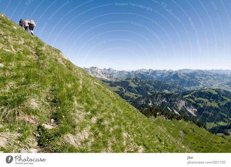 aufwärts Mensch Natur Jugendliche Sommer ruhig Erwachsene Ferne Leben Landschaft Berge u. Gebirge oben Freiheit Gras hoch wandern Ausflug