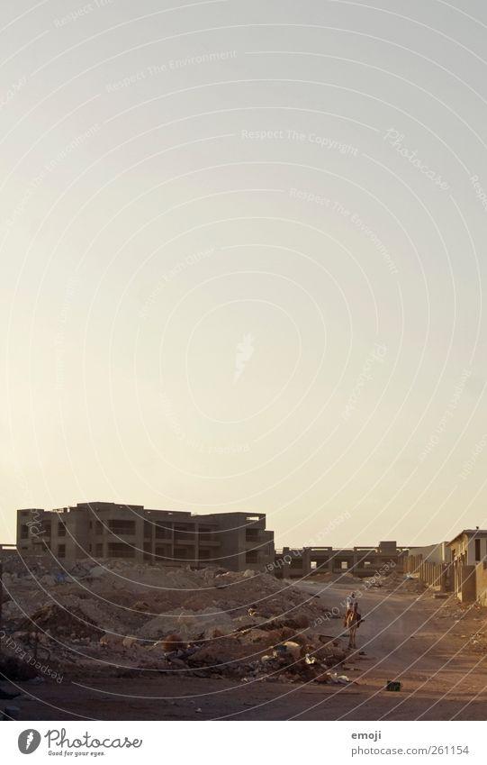 Kamelreiter Mensch Haus Sand Wärme Erde Beton Armut Baustelle trocken Konstruktion Nutztier Dürre Ägypten