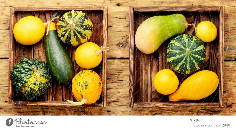 Bunte Kürbis-Sammlung Herbst fallen Saison saisonbedingt Gemüse Halloween Herbstkürbis September Herbstkarte Herbstharverst Ernte Erntedankfest Hintergrund