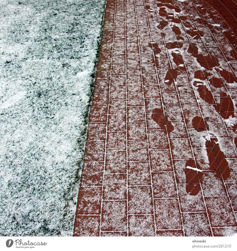 Spuren Winter Eis Frost Schnee Garten Wiese Menschenleer Wege & Pfade kalt grün rot weiß Fußspur Suche gehen Abdruck Farbfoto Außenaufnahme Muster