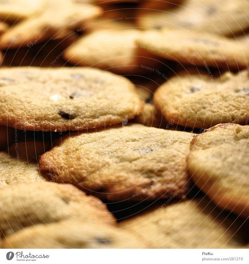 Kekse sind für alle da Lebensmittel Teigwaren Backwaren Dessert Süßwaren Ernährung Duft frisch lecker süß Glück Fröhlichkeit Völlerei gefräßig cookie cookies