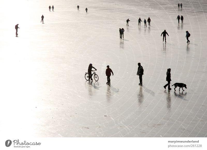 wenn die welt. Mensch Hund Natur Wasser Winter klein See Freundschaft Eis gehen Frost Spaziergang Glätte graphisch Schlittschuhlaufen Schwarzweißfoto