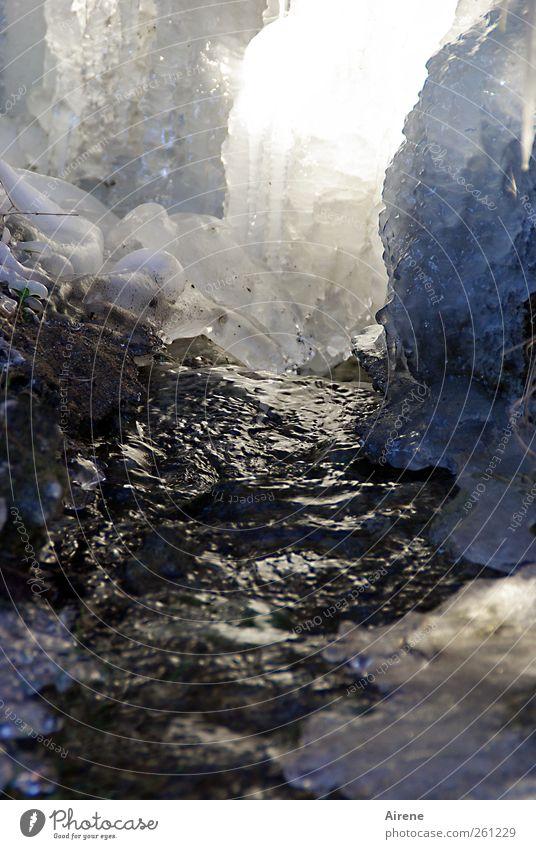 Der Frost kam über Nacht [MINI-UT INNTAL 2012] Natur blau Wasser weiß Winter kalt grau glänzend Eis leuchten Abenteuer Urelemente gefroren Flüssigkeit frieren