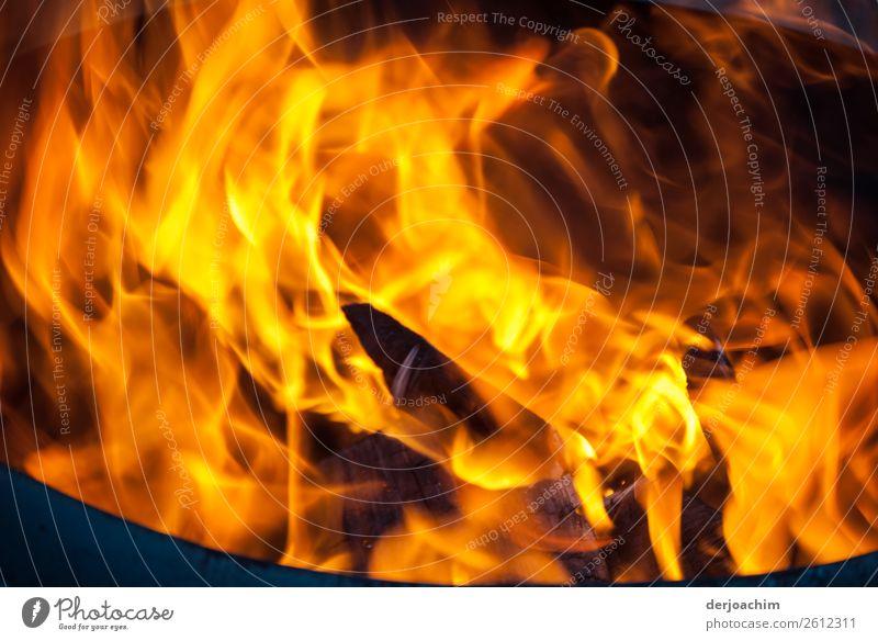 Feuer und Flamme Freude Wohlgefühl Winter Schönes Wetter Garten Bayern Deutschland Schalen & Schüsseln Rauch gebrauchen beobachten genießen Blick fantastisch
