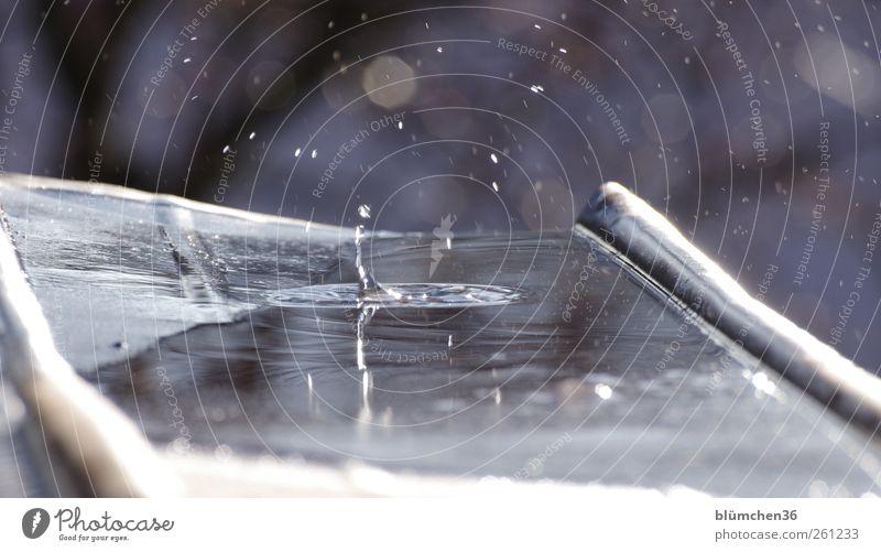 Highlife in der Dachrinne [MINI-UT INNTAL 2012] Wasser Wassertropfen Flüssigkeit nass blau Klima tauen tropfend springen frisch kalt Klarheit Momentaufnahme