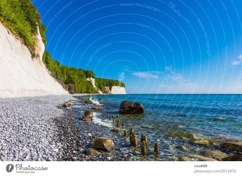 An der Küste der Ostsee auf der Insel Rügen Erholung Ferien & Urlaub & Reisen Tourismus Meer Natur Landschaft Wolken Baum Wald Felsen Sehenswürdigkeit Stein