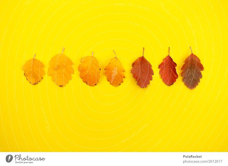 #A# Designer-Herbst Kunst ästhetisch herbstlich Herbstlaub Herbstfärbung Herbstbeginn gelb Gelbstich knallig Blatt Natur Kreativität graphisch Designwerkstatt