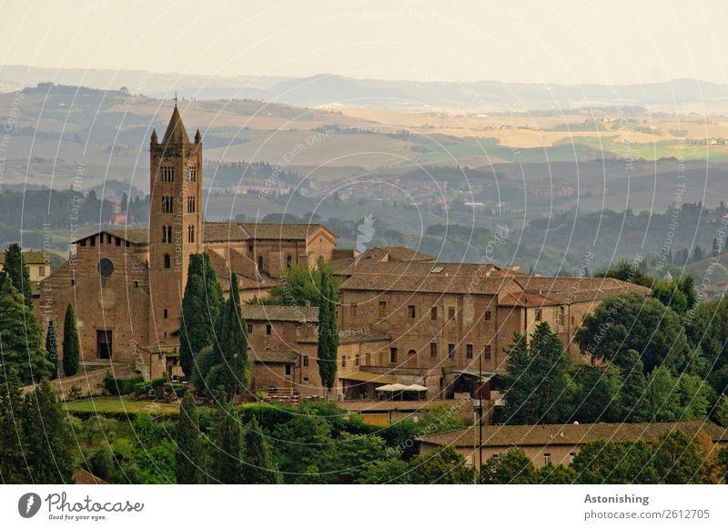 Basilica Kunst Umwelt Natur Landschaft Pflanze Himmel Sonne Sommer Wetter Schönes Wetter Baum Hügel Siena Italien Stadt Altstadt Kirche Park Turm Bauwerk