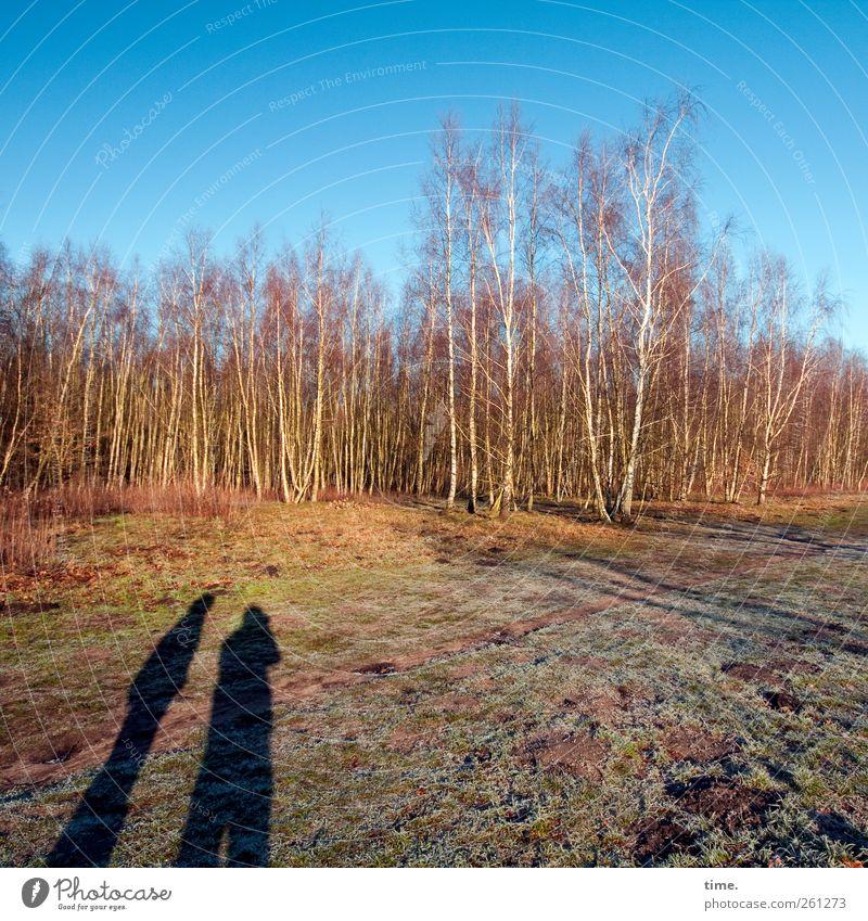 Hier entsteht demnächst Ihr freundliches Parkhaus Mensch Himmel Natur Baum Winter Wald Umwelt Landschaft Freundschaft Feld Schönes Wetter Zusammenhalt Moos