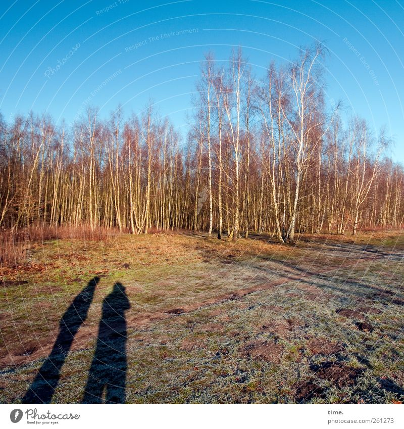 Hier entsteht demnächst Ihr megacooles Parkhaus Mensch Himmel Natur Baum Winter Wald Umwelt Landschaft Freundschaft Feld Schönes Wetter Zusammenhalt Moos