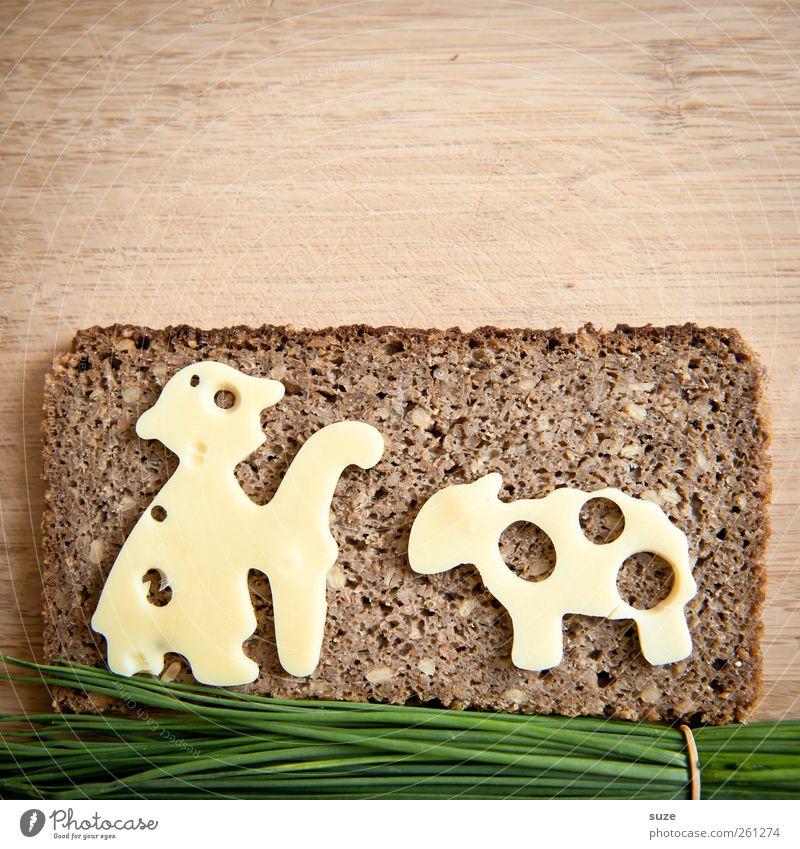 Schafskäse grün lustig braun Lebensmittel Gesunde Ernährung Kreativität Idee Kräuter & Gewürze lecker Brot Bioprodukte tierisch Belegtes Brot Käse