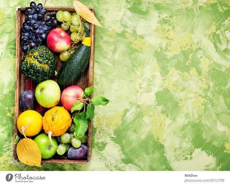 Schöne Herbsternte Kürbis Dekoration & Verzierung fallen Ernten Saison Gemüse natürlich saisonbedingt Trauben Beeren Pflaume Stillleben gelb Natur Lebensmittel