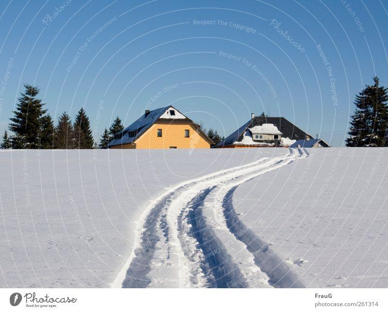 Nach Hause... Ausflug Winter Schnee Winterurlaub Wintersport Skifahren Wolkenloser Himmel Sonnenlicht Schönes Wetter Eis Frost Baum Dorf Menschenleer Dach