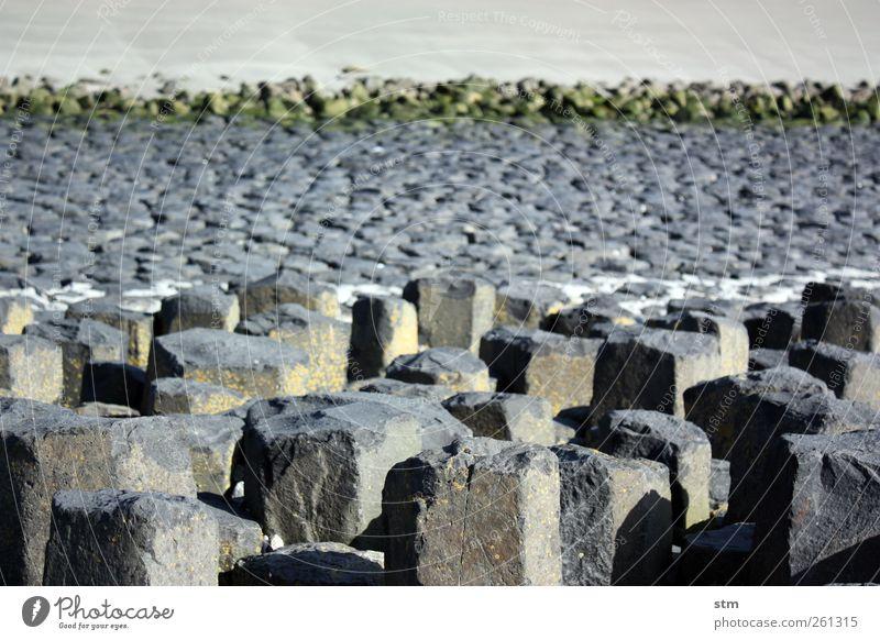 über stein und stein Natur Strand Umwelt Landschaft Sand Küste Stein Felsen Urelemente einfach Unendlichkeit Nordsee Ebbe Gezeiten steinig Wasserlinie
