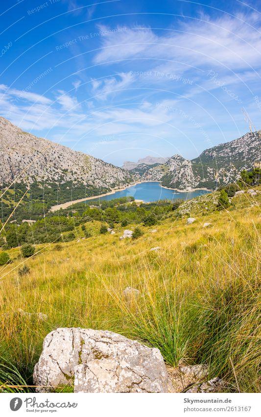 Gorg Blau auf Mallorca im Tramuntana Gebirge Wandern, Erwander Ferien & Urlaub & Reisen Natur Gesunde Ernährung Sommer Pflanze Landschaft Sonne Baum Blume Tier