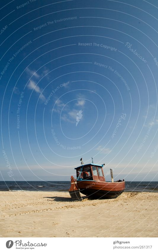 frische fische Himmel Natur blau Wasser Sommer Meer Strand Ferne Umwelt Landschaft Küste Horizont Deutschland Erde Arbeit & Erwerbstätigkeit Urelemente
