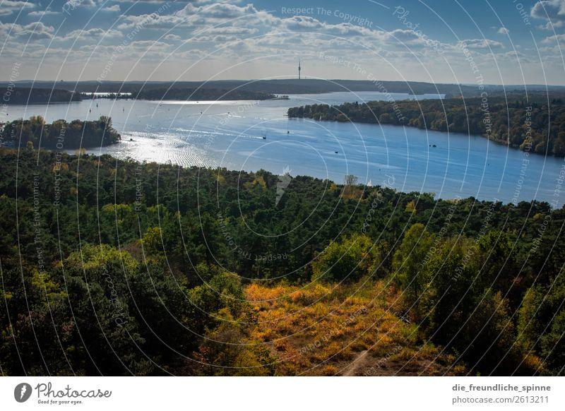 Herbst an der Havel Natur Landschaft Pflanze Wasser Himmel Sonne Sonnenlicht Schönes Wetter Baum Wald Berge u. Gebirge Karlsberg Teufelsberg Flussufer Berlin