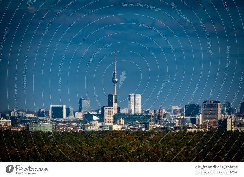 Skyline Berlin Sommer blau Stadt grün Baum Wald Herbst Deutschland grau Horizont Europa Hochhaus Schönes Wetter Sehenswürdigkeit