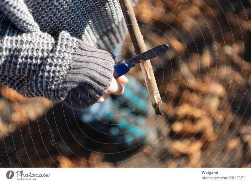 Schnitzwerk Kind Wald Gesundheit Junge braun frei Spielzeug Messer Ereignisse frech Stock schnitzen