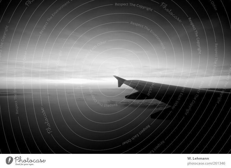 Nachruf Luftverkehr Schönes Wetter Verkehr Verkehrsmittel Verkehrswege Flugzeug Passagierflugzeug Tod Schwarzweißfoto Außenaufnahme Experiment Menschenleer