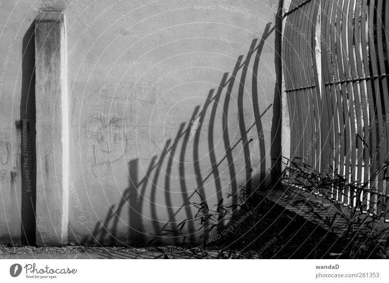 ________________ weiß Stadt schön Freude schwarz Wand Graffiti grau Mauer Freundschaft Park Kindheit elegant natürlich authentisch Zeichen