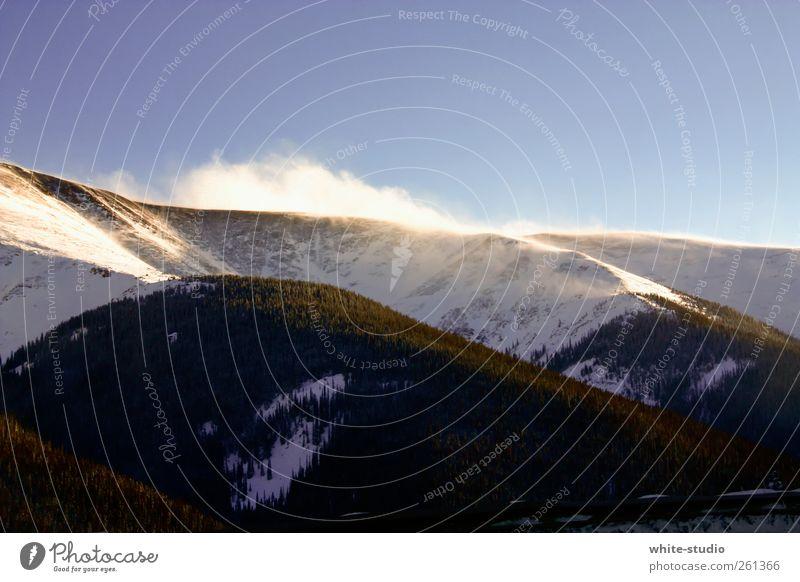 Schneewolken Landschaft wandern Schneesturm Schneedecke Wind Schneelandschaft Schneewehe Baum Rocky Mountains Berge u. Gebirge kalt Frost Eis Wald Tanne Winter