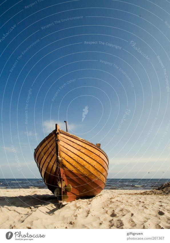 großer fang Umwelt Natur Landschaft Urelemente Sand Wasser Himmel Horizont Sommer Wetter Schönes Wetter Wellen Küste Strand Ostsee ästhetisch blau