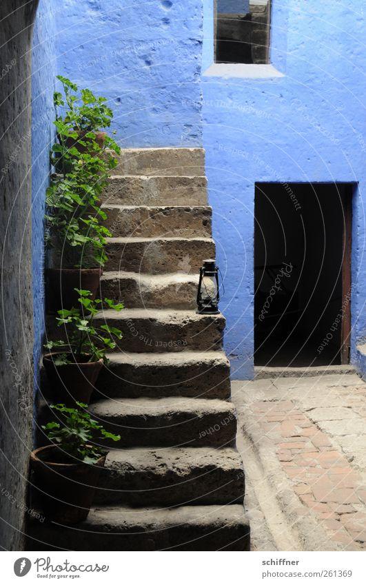 Blaue Treppe Haus Bauwerk Mauer Wand Fassade Sehenswürdigkeit Denkmal blau Farbe Pelargonie Topfpflanze historisch Historische Bauten Laterne Autofenster