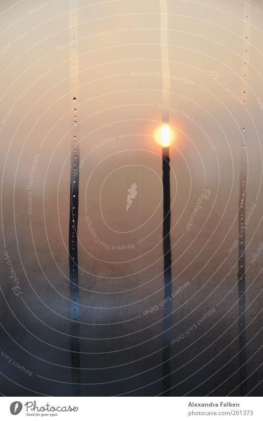Wasser in der Wohnung II Wetter Häusliches Leben Wassertropfen Klima nass Tau Bahn Morgendämmerung Schimmelpilze Kondenswasser Sonnenuntergang