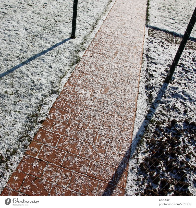 Schräg Winter Wiese kalt Schnee Wege & Pfade Garten Stein Linie Eis Feld Frost Schönes Wetter Pflastersteine Pflasterweg